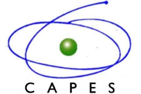 Uma super reitoria chamada CAPES