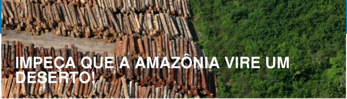 Amazonia é nossa mas menos nossa do que de toda a Humanidade. Apenas nós somos os guardiões da Amazônia tendo como síndicos o povo das florestas.